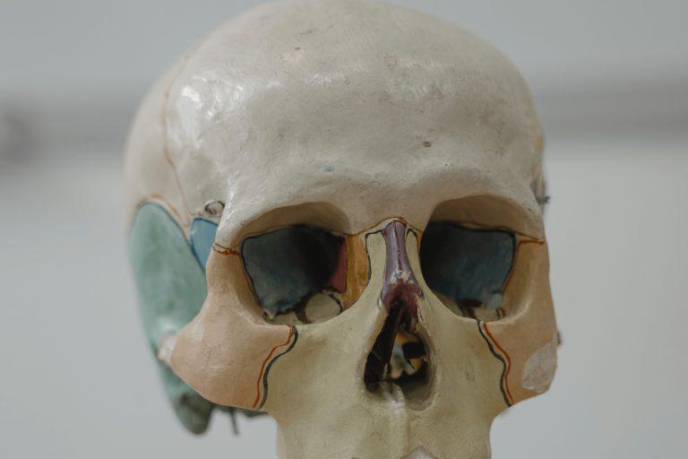 Conducción ósea